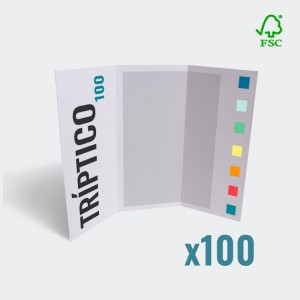 Tríptico 99x210mm a color 135g