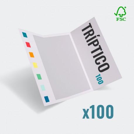 Tríptico 99x210mm a color 300g